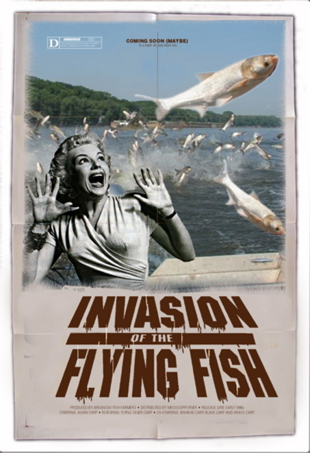 Thumbnail image for Pathways to Invasion