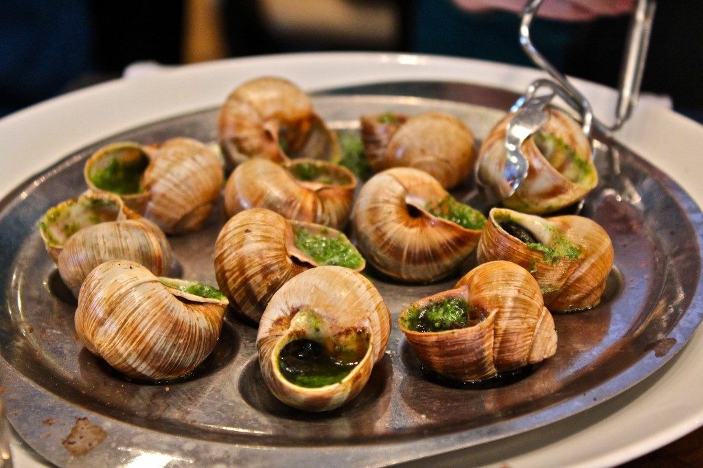Garden snail for A french cuisine
